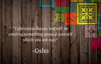 osho-quotes-83
